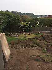New Garden and Driveway in Kenilworth, Warwickshire_11