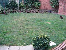 Artificial Lawn Astro Turf_2