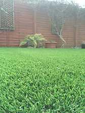 Artificial Lawn 5_7