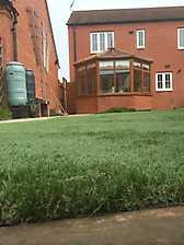 Artificial Lawn 5_9