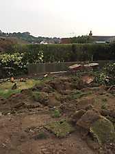 New Garden and Driveway in Kenilworth, Warwickshire_10